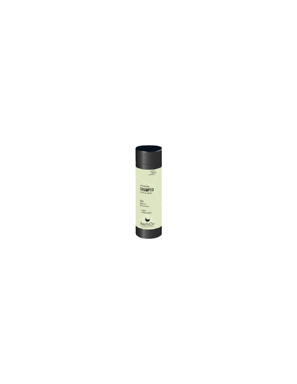 Ginkgo Biloba - 90 cápsulas - El Granero Integral