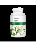 Gastroenzym® - 60 cápsulas. mundonatural