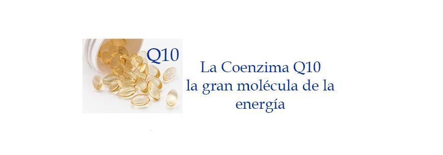 Coenzima Q10, la gran molécula de la energía